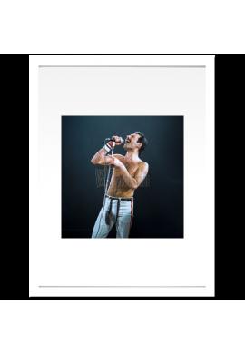 Freddie Mercury (Queen)