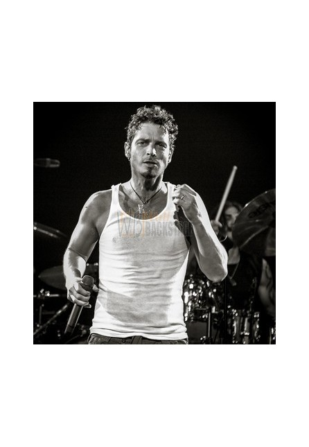 Chris Cornell (Audioslave)