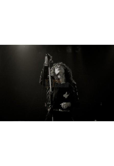 David Coverdale (Whitesnake)
