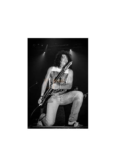 Steve Lukather (Toto)