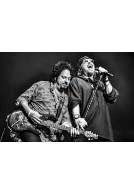 Steve Lukather & Joseph Williams (Toto)