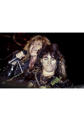 David Coverdale & Steve Vai (Whitesnake)