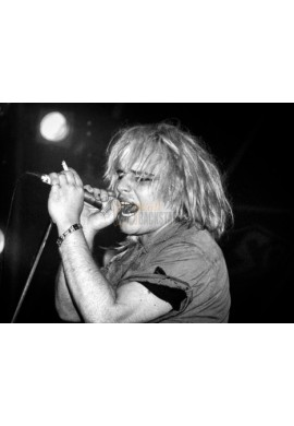Jeffrey Lee Pierce (Gun Club)
