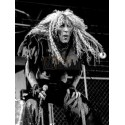 Dee Snider (Twisted Sister)
