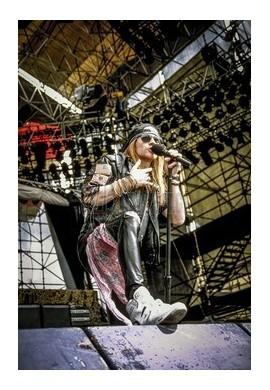 Axl Rose (Guns N' Roses)