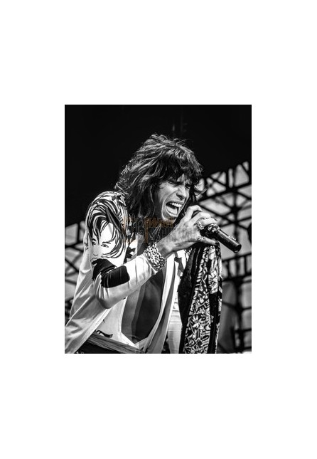 Steven Tyler (Aerosmith)