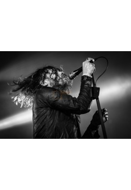 Jay Buchanan (Rival Sons)